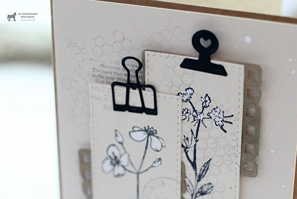 Zbliżenie na spinacze biurowe na karteczkach z ziołami